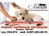 Логотип Зоолого-Ветеринарная клиника БАГИРА, ООО